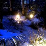 Сочи зима 3.jpg